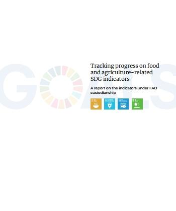 Tracking progress on food and agriculture-related SDG indicators
