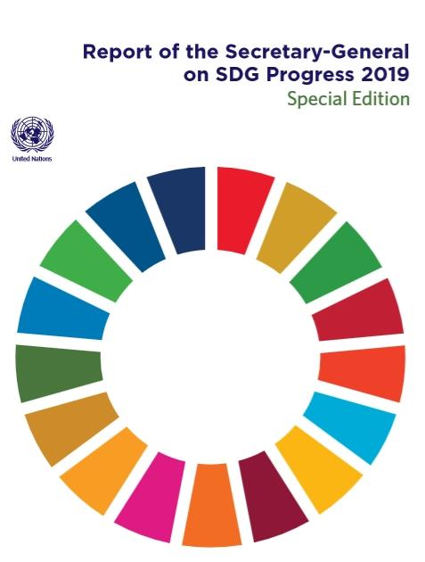 SG on SDG progress