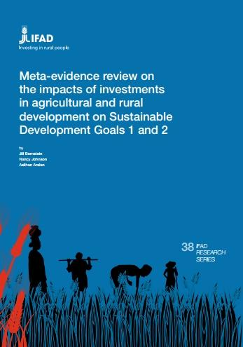 Meta-evidence review on the impacts of investments in agricultural and rural development on Sustainable Development Goals 1 and 2